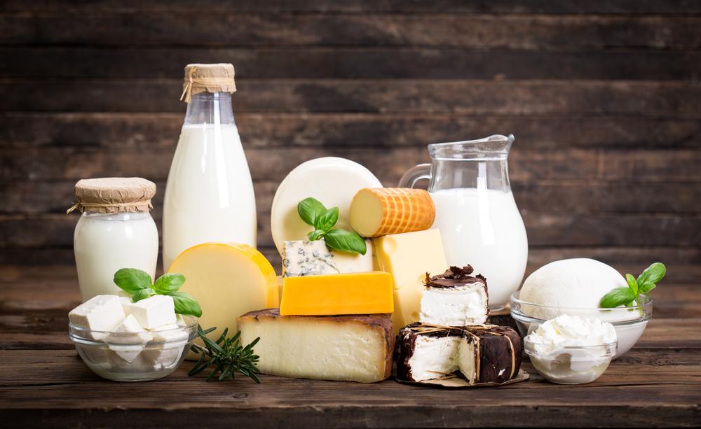 basic-understanding-dairy-sector-business