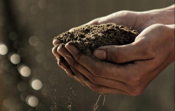 soil-testing-when-how-and-why