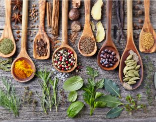 herbs-and-spices-thrive-in-conditions-under-which-other-crops-are-unable-to-grow