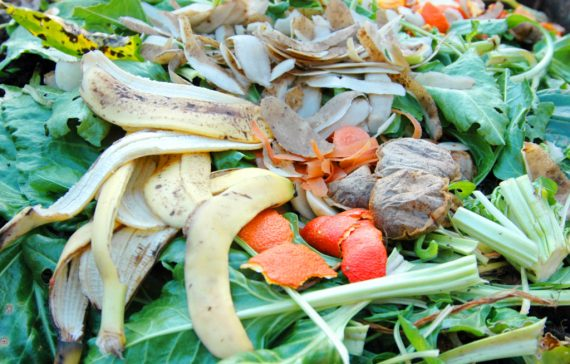 turn-your-kitchen-waste-into-manure