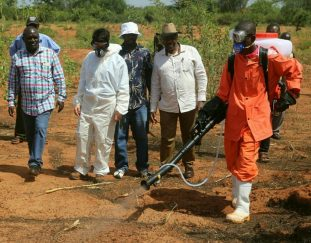 motorized-spraying-of-locust-nymphs-yields-results-in-kitui-county