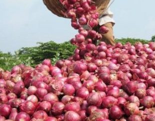 counties-urged-to-specialize-in-climate-appropriate-crops