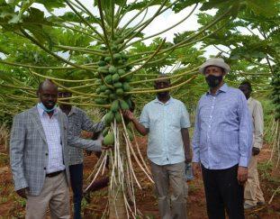 pastoralist-communities-urged-to-shift-to-modern-farming