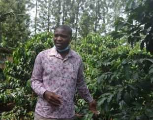 farmers-supportive-of-anticipated-coffee-reforms