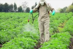 tips-to-safely-handle-agricultural-pesticides