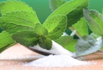 Stevia Farming: A Leaf That is Changing the Lives of Many Farmers