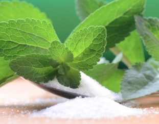 stevia-farming-a-leaf-that-is-changing-the-lives-of-many-farmers