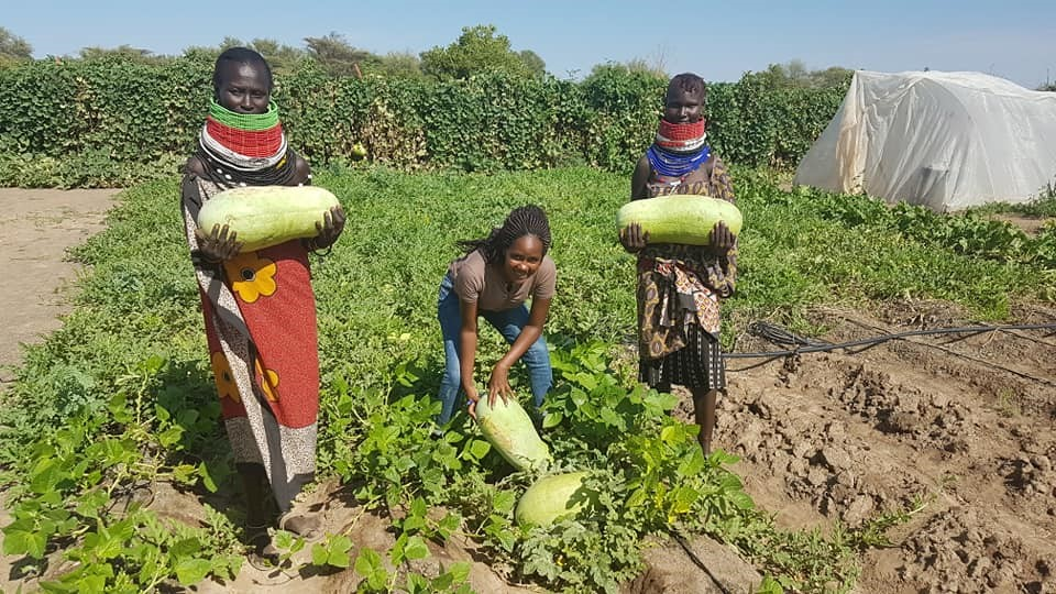 Kenyan lady returns from abroad to turn dry Turkana into green farms