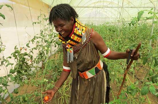 I CAN FEED MYSELF- TEACH ME HOW TO FARM | by mkulima patricia | AFFAC MEDIA  | Medium