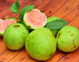guavas-mapera-what-you-need-to-know-about