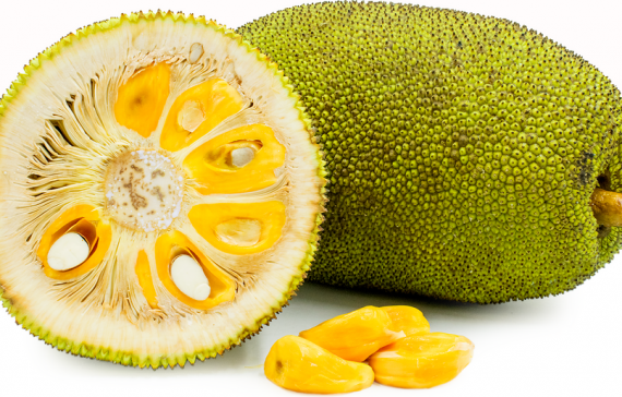 jackfruit-the-largest-edible-fruit