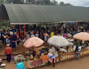 government-moves-in-on-potato-cartels